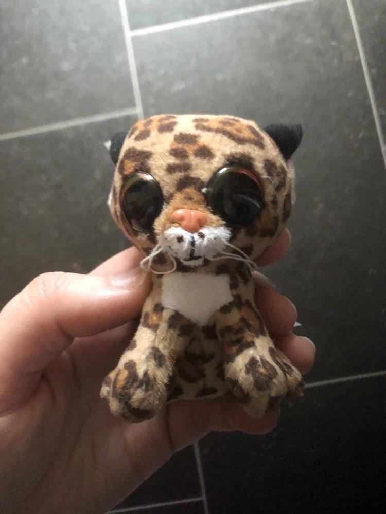 Lynx the plush toy