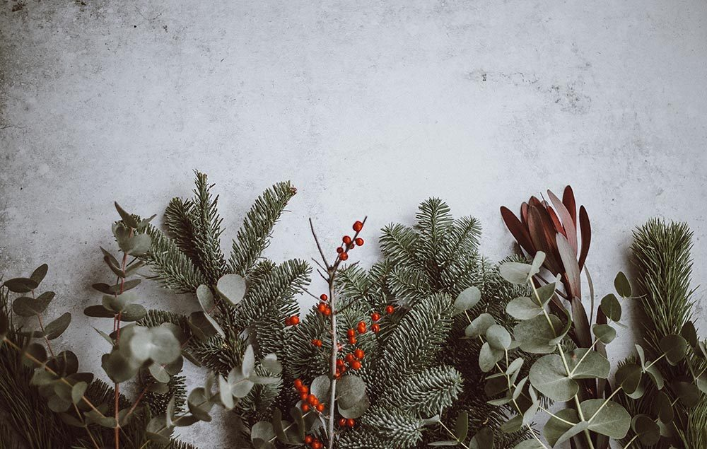 Christmas twigs and berries