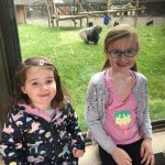 Lottie and Mia sat with a gorilla in the background