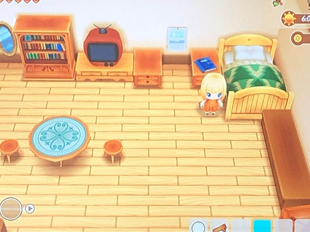 Gameplay for Story of Seasons