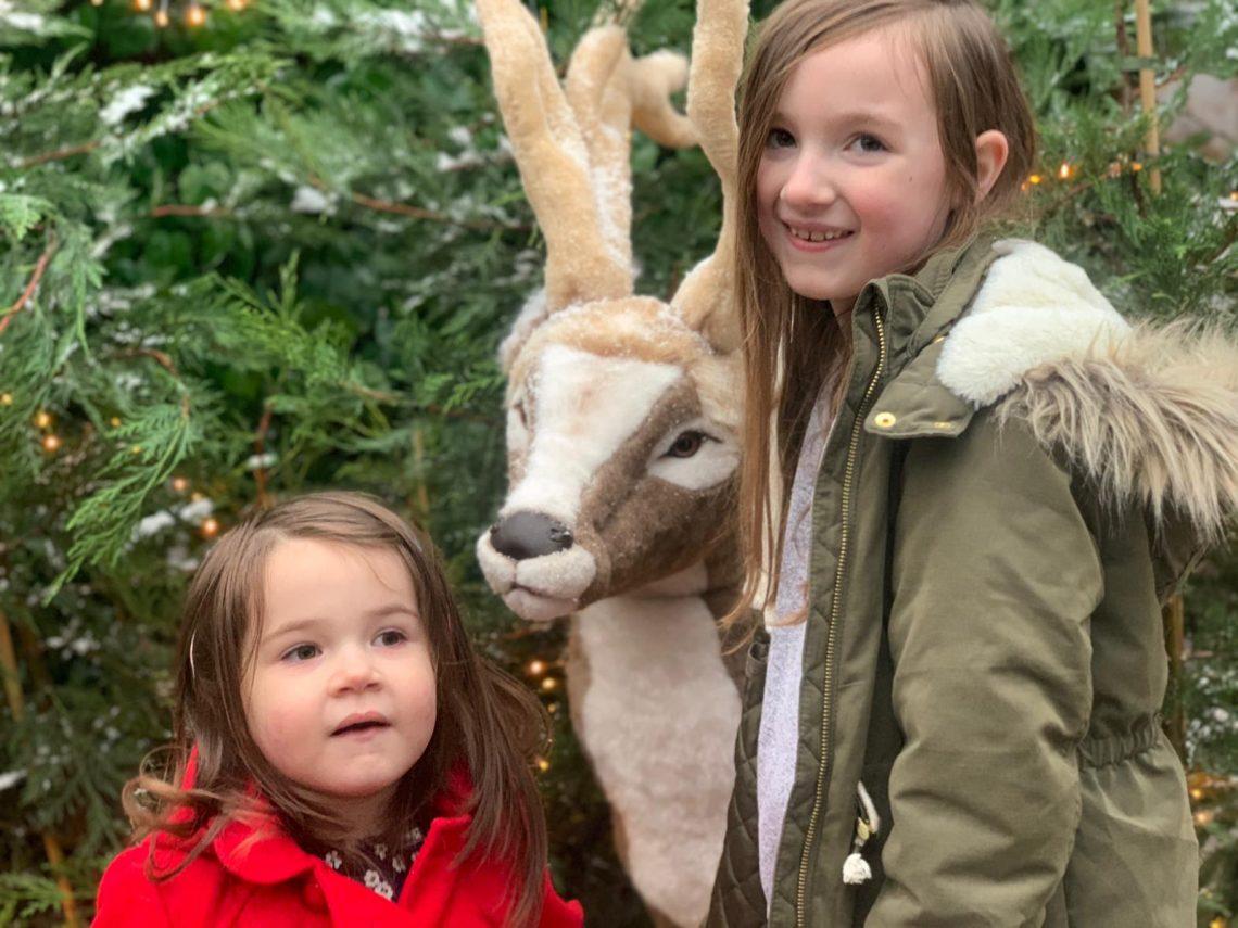 Girls meeting Santa