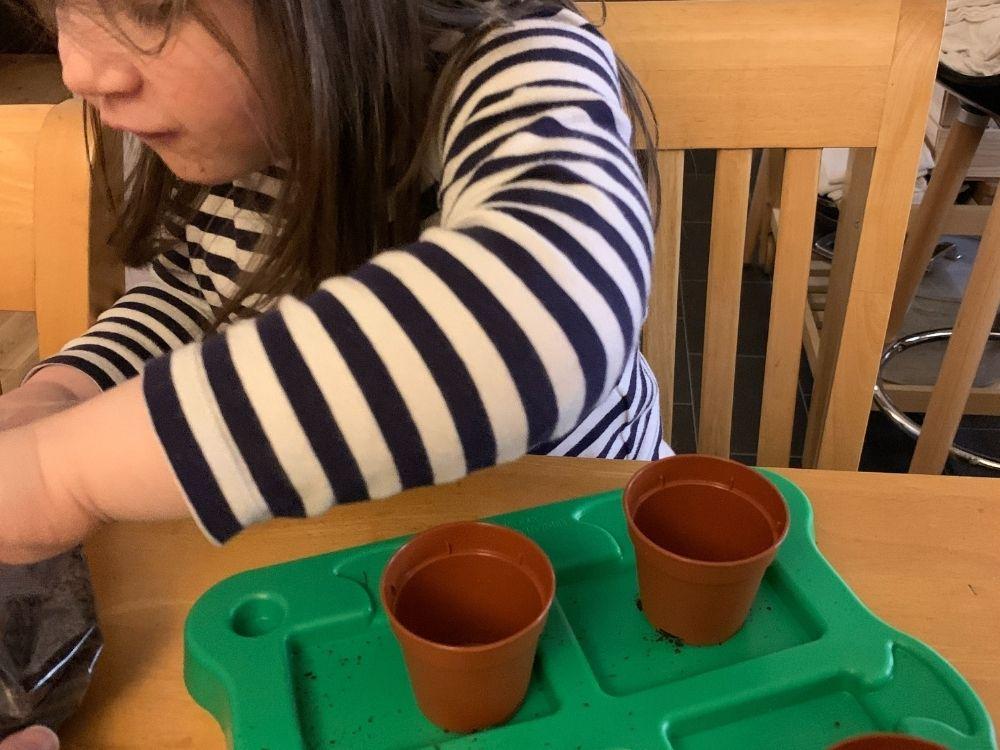 Lottie with 2 brown mini flowerpots