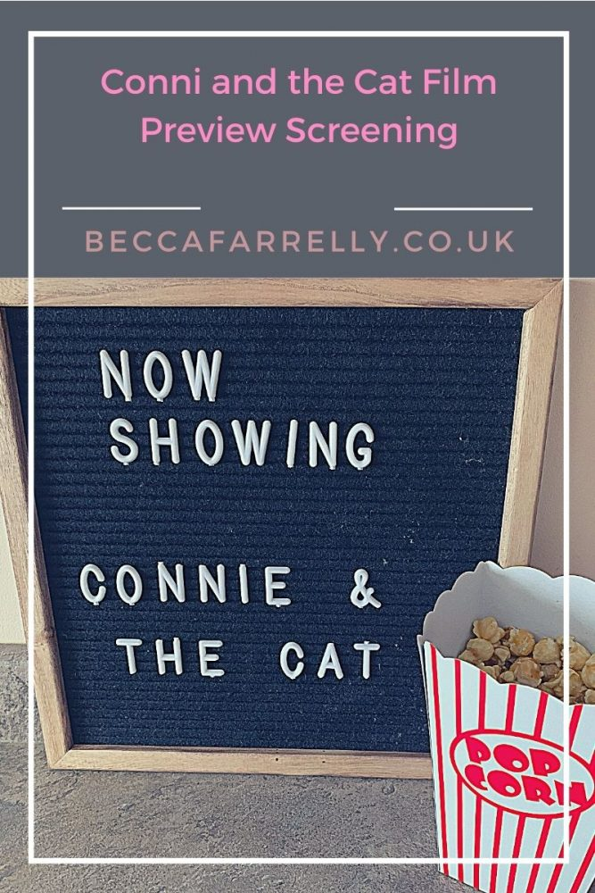 Cover image for Conni and the Cat